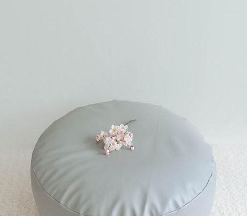 Newborn posing beanbag