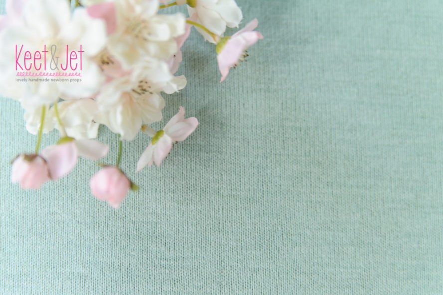 Backdrop fabric Autumn Mint
